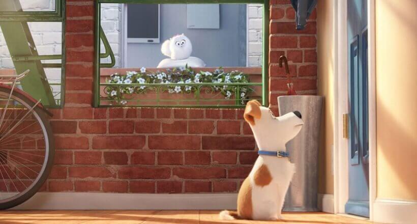 Gewinnspiel: Wir verlosen Blu-rays von <em>Pets</em>