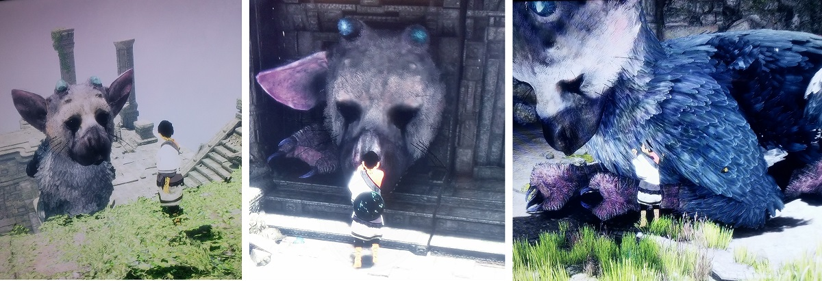 Last Guardian Test trico cuteness overload