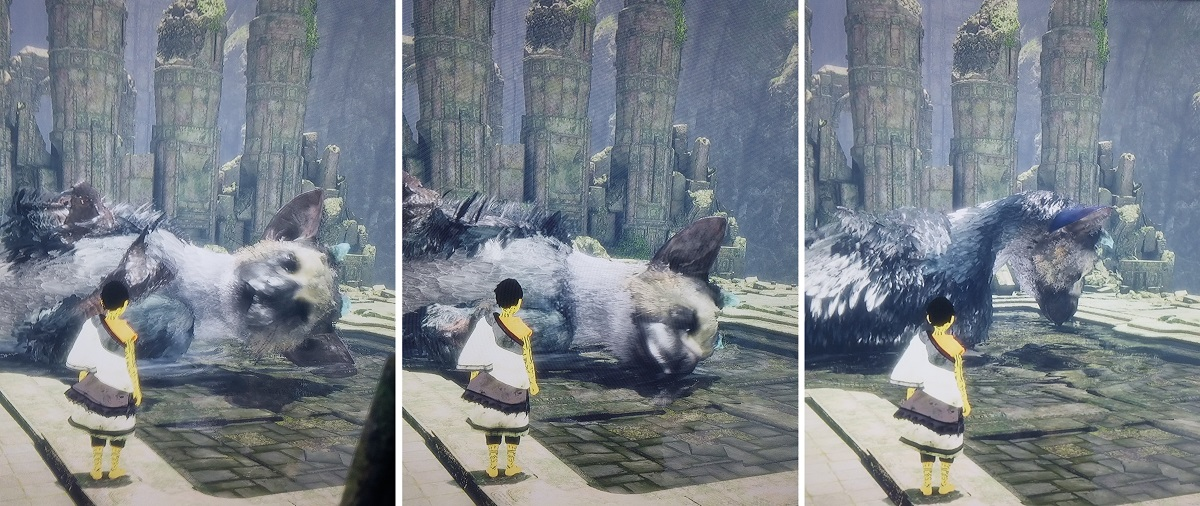 Last Guardian Test Trico nimmt ein Bad