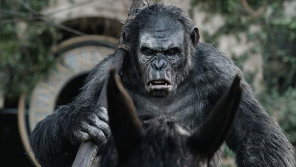 Planet Der Affen Survival Hd Stream