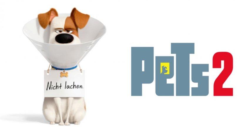 Gewinnspiel Pets 2 Verlosung gratis gewinnen kostenlos kino